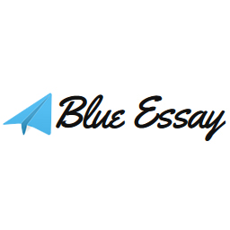 any good essay writing services